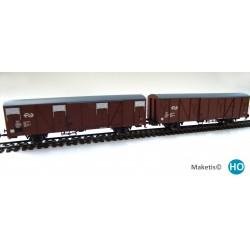 Rame de 2 wagons couverts NS Gbs Europ HO Exact-Train. Epoque IV