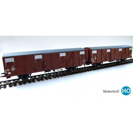 Rame de 2 wagons couverts NS Hbs HO Exact-Train. Epoque III EX20180 - MAKETIS