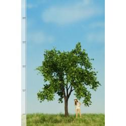 Apfelbaum Sommer MBR - MAKETIS