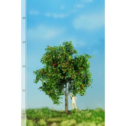 Pommier avec fruits MBR - MAKETIS
