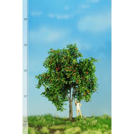 Apfelbaum mit Früchten Sommer MBR - MAKETIS
