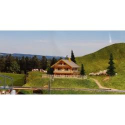 Chalet de montagne Boismodelisme BatChalet002 - MAKETIS BM87MAI001