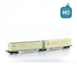 Wagon double Sggmrs 90 AAE + 2 containers 45' Warsteiner EP VI HO Lemke 58959