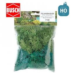 Assortiment de mousses d'Islande vertes Busch 7102 - Maketis