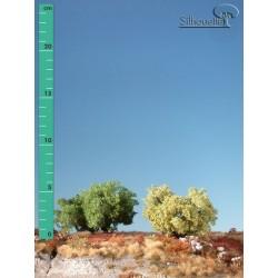 Arbuste haut (jusqu'à 8 cm)