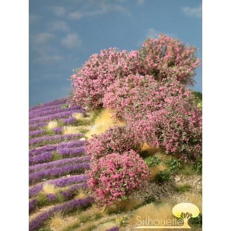 Rhododendron vert